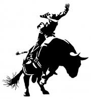 Bull-Rider